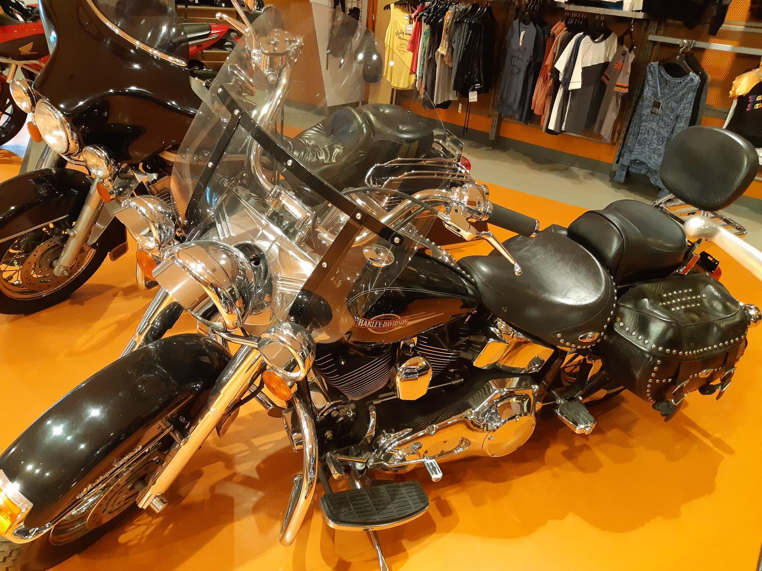 2005 Harley Davidson FLSTCI