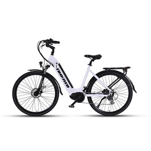 Demon Electric Division Tronio E-Bike 48V 2021