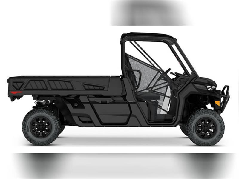 2020 Can-Am Defender HD10 DPS - PRO